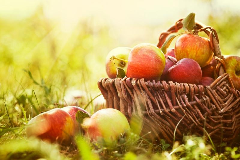 Lebensmittel die fett verbrennen Äpfel gesunde Ernährung Obst und Gemüse