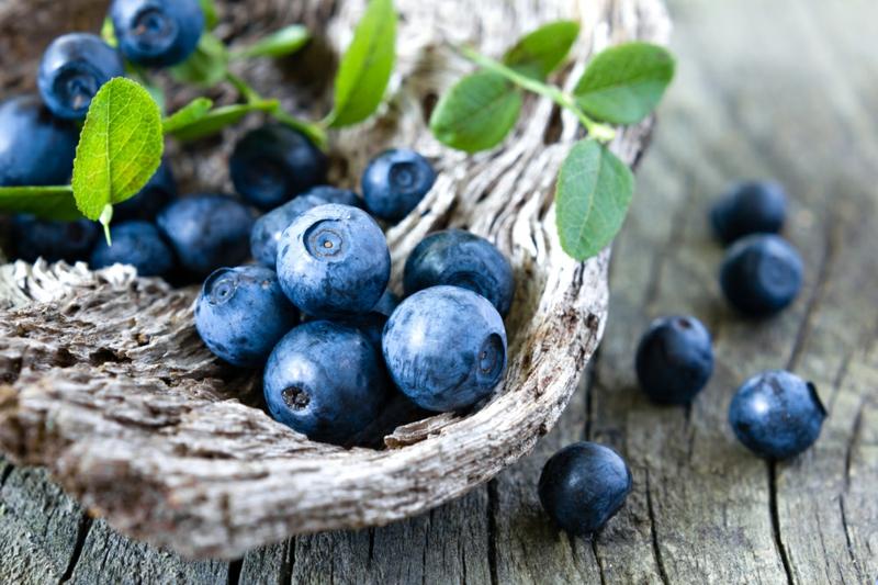 Lebensmittel die fett verbrennen Blaubeeren gesunde Ernährung Obst und Gemüse