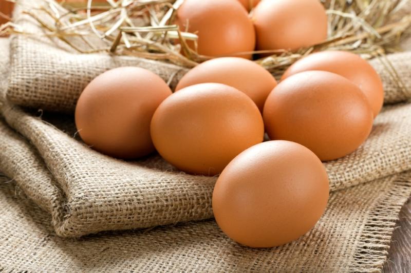 Lebensmittel die fett verbrennen Eier gesunde Ernährung