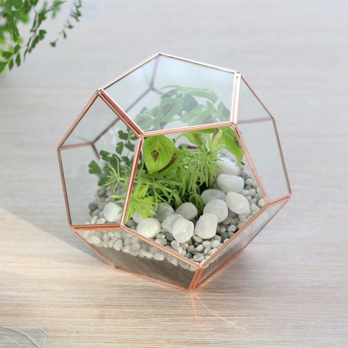 Plexiglas bearbeiten Accessoires aus Plexiglas selber machen Terrarium