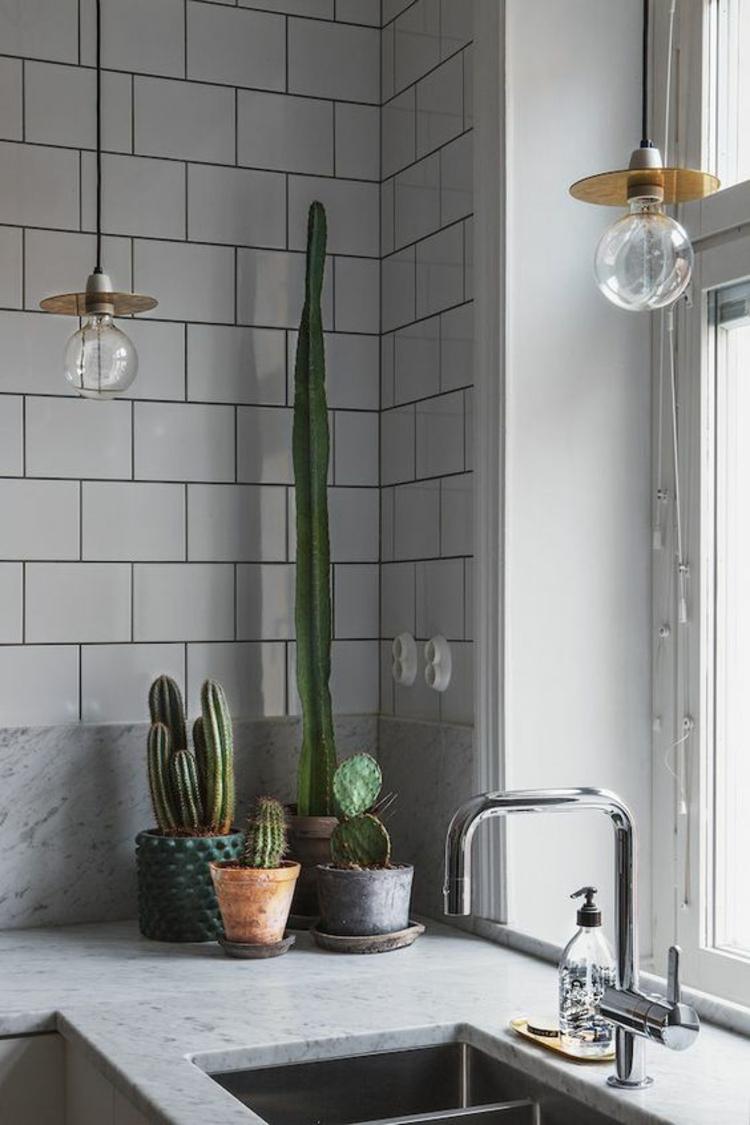Wohnung einrichten pflegeleichte Zimmerpflanzen Kakteen