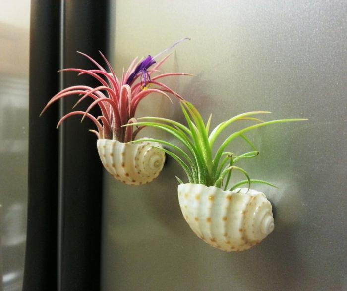 bastelideen wohndeko kreative hängende gaerten muschel