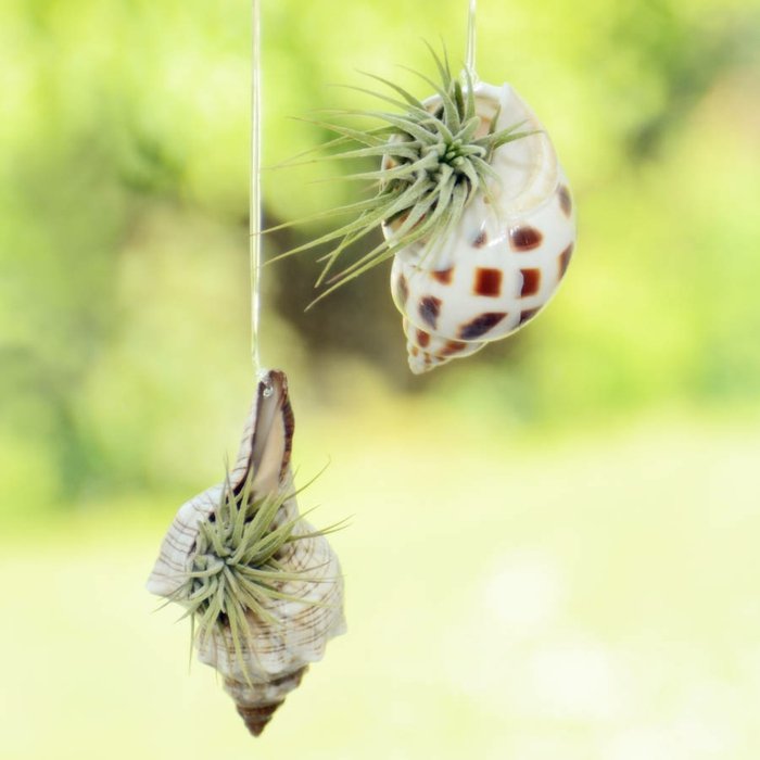 bastelideen wohndeko kreative hängende gaerten