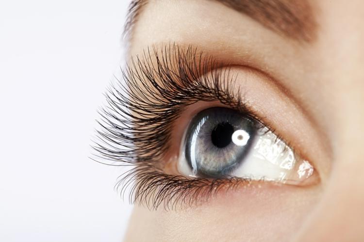 beste Mascara Wimpertusche kaufen Tipps