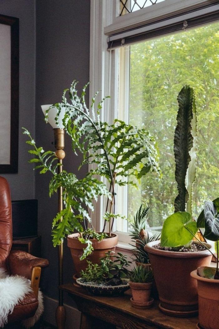 dekoideen fensterbank pflanzen rustikal ledersessel