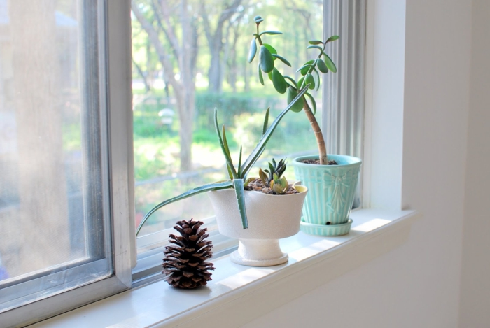 dekoideen fensterbank pflanzen wohnideen