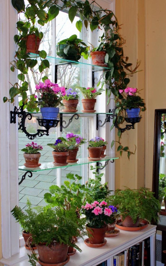 dekoideen fensterbank regale pflanzenbehälter frisch