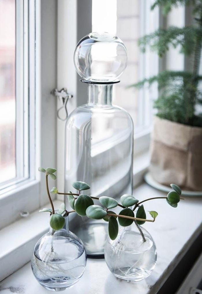 fensterbank dekoration glasgefäße pflanzen