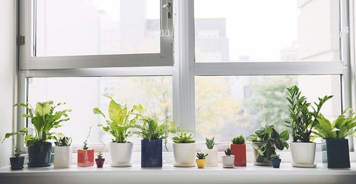 Fensterbank Deko fensterbank dekoration 57 ideen wie sie das potenzial der