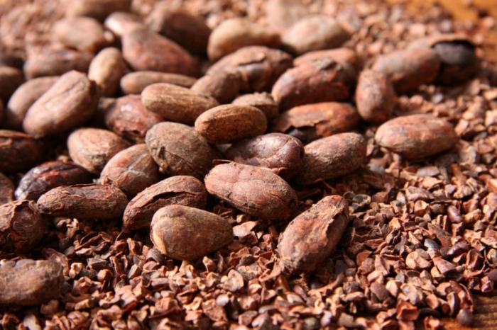 gartencenter gartengestaltung kakao mulch gefärlich gartenideen