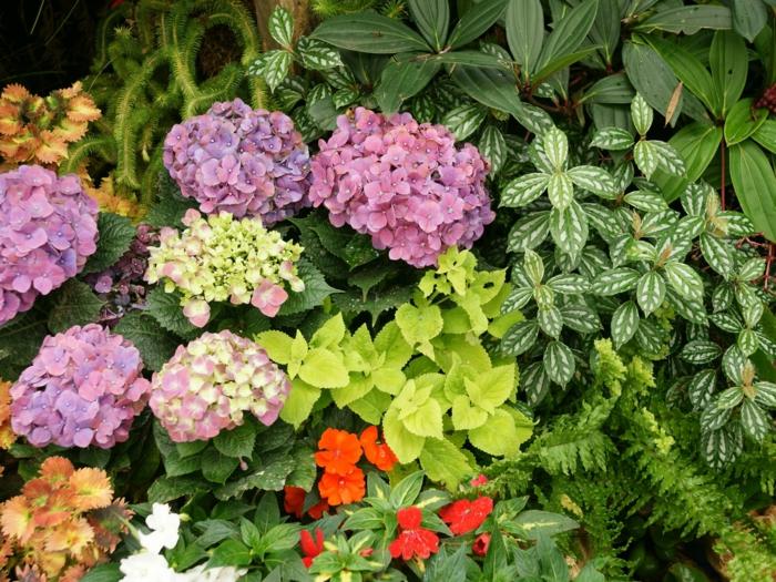 gartengestaltung farbige blüten gartenideen