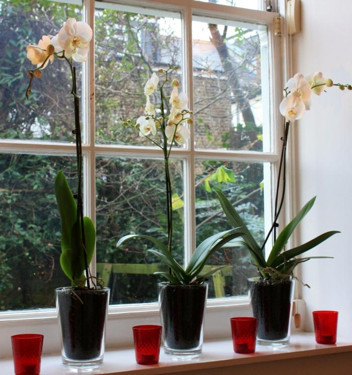Moderne Dekoration Wohnzimmer Braun Weis Images. Wohnzimmer Wei