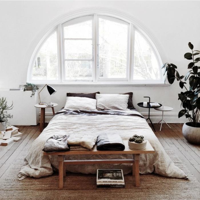 pflanzen wohnzimmer raumklima:Beste Schlafzimmer Pflanze: Raumklima ...