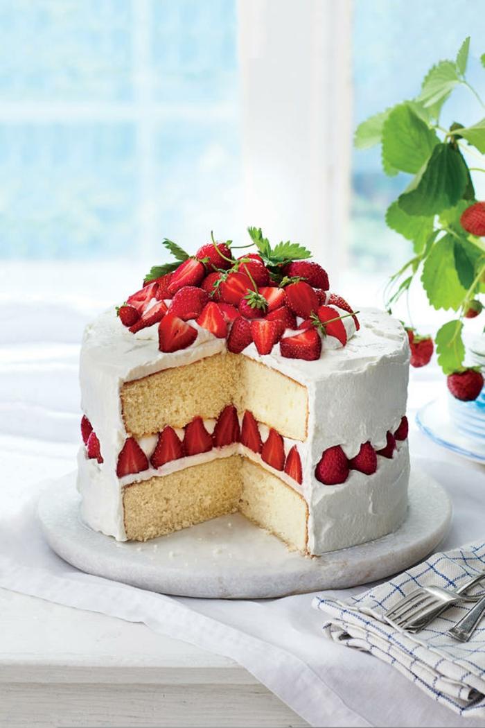 rezepte mit erdebeeren erdbeertiramisu torte