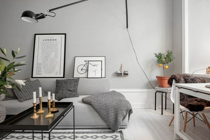 sofa grau couchtisch pflanzen wohnzimmer