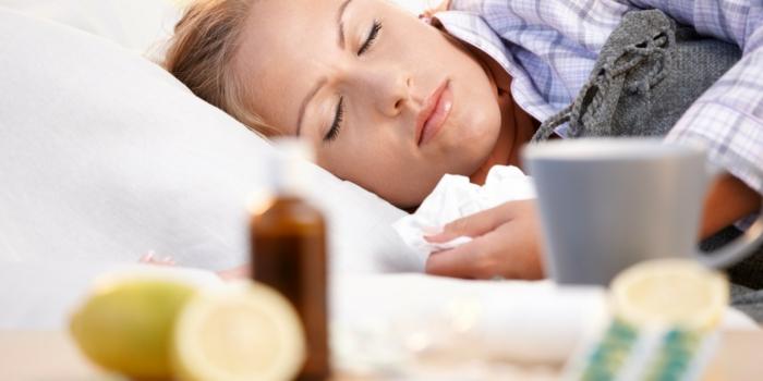 sommergrippe viren kraft naturmittel ingwerteezitrone