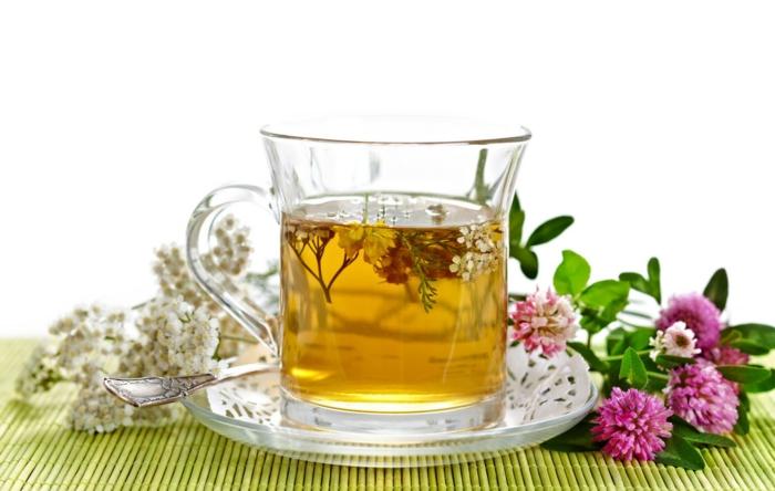 tee zubereiten kräuter gesunde tees ideen