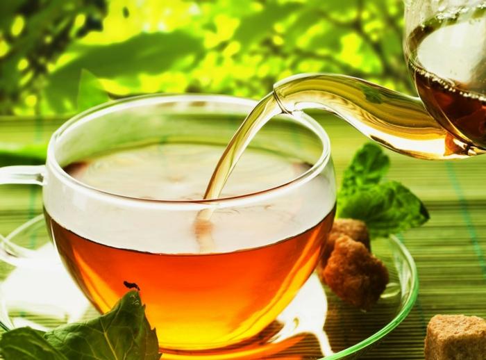tee zubereiten vorteile gesundheit lifestyle