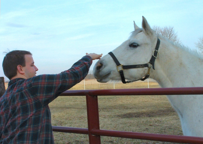 therapeutisches reiten vertrauen aufbauen autism