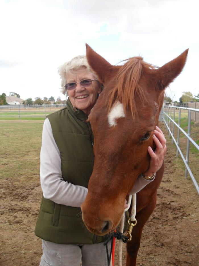 therapeutisches reiten vertrauen aufbauen perfekt senioren