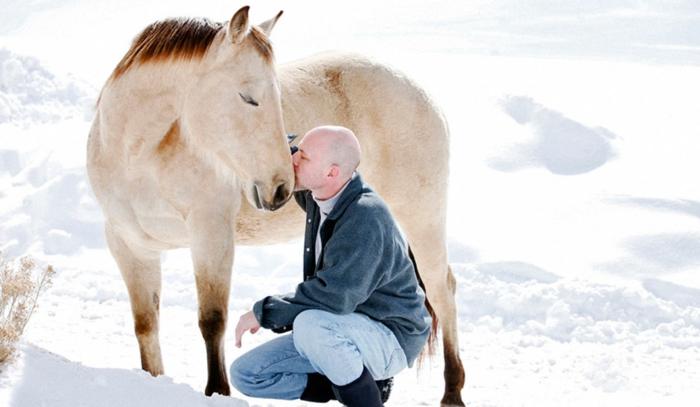 therapeutisches reiten vertrauen aufbauen verstehen pferdchen depression