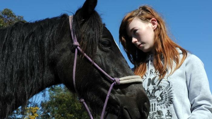 therapeutisches reiten vertrauen aufbauen verstehen pferdchen hoffnung band schwierige teenagers