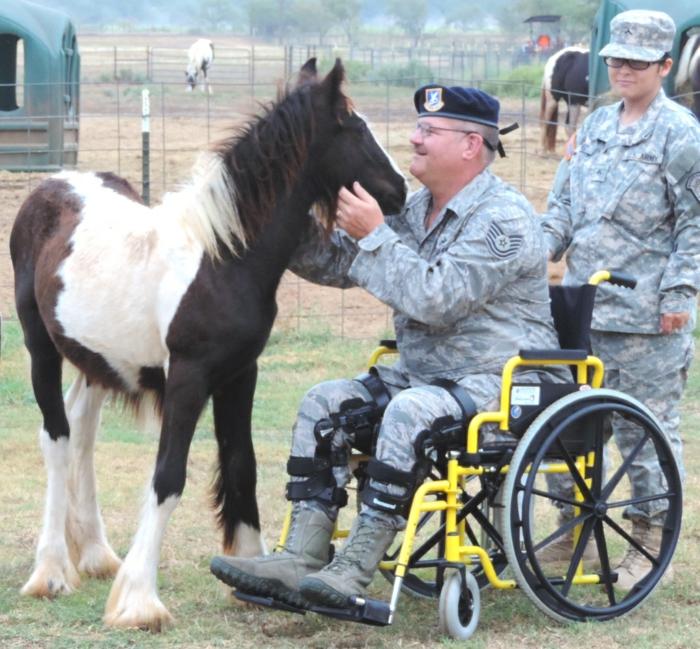 therapeutisches reiten vertrauen aufbauen verstehen pferdchen