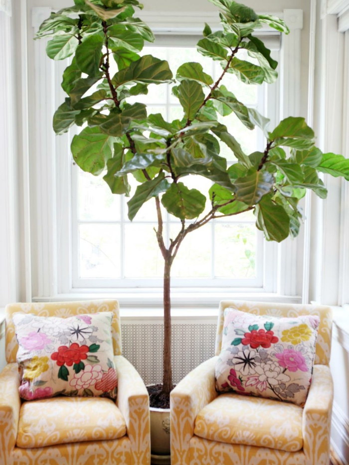 wohntrends wohnzimmer erholungsecke topfpflanze dekokissen florales muster