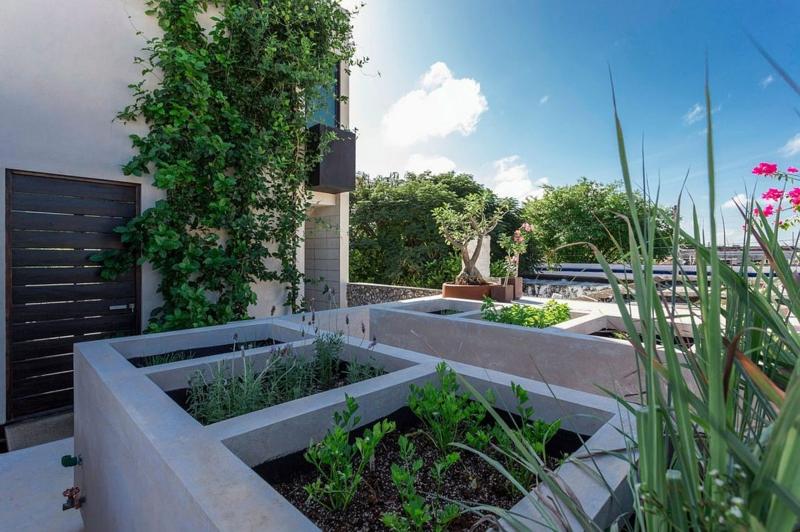 Casa Desnuda Merida Mexico Moderne Häuser bauen Dachterrasse gestalten