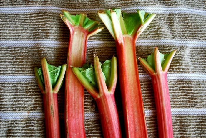 Rhabarber rezepte erdbeeren ingwer konfiture kuchen titel2