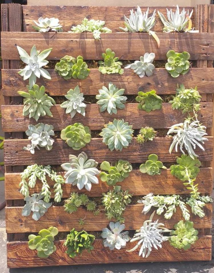 Vertikaler Garten Anleitung Gartenmöbel aus Paletten Sukkulenten einpflanzen