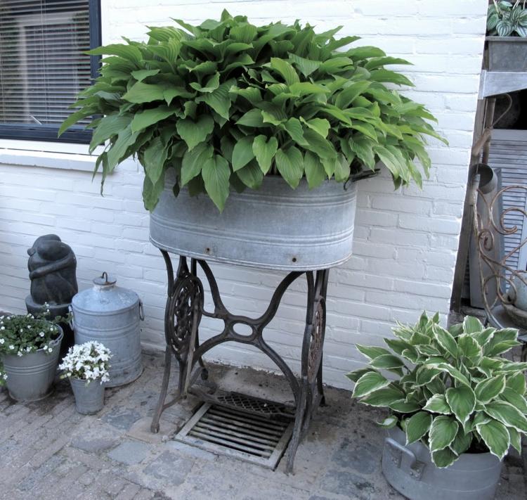Vorgartengestaltung Vintage Stil Gartenmöbel Gartenpflanzen
