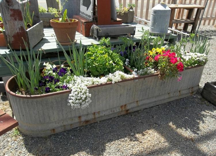 Vorgartengestaltung Vintage Stil Gartenpflanzen Kübel