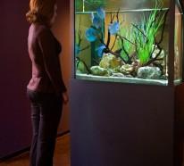 Warum sollte man  das Interieur mit Aquarium einrichten?