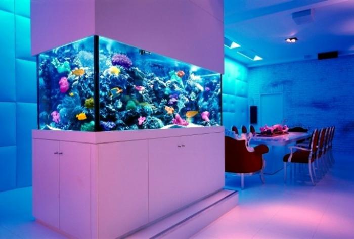 aquarium eirichten design atmosphäre einrichtungsbeispiele wandgestaltung weißes violett