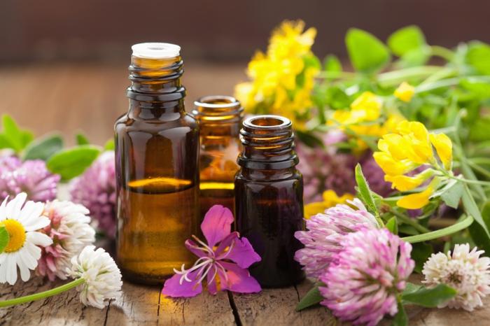 bachblüten wirkung holsistische heilung heilpraxis studioaufnahme entspannung in flaschen nadel