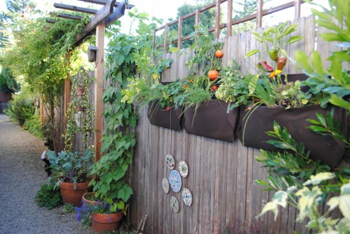 gartendeko ideen dekoideen hinterhof gemüse züchten