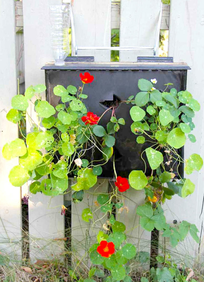 gartendeko ideen garten pflanzen gartenzaun hinterhof gestalten