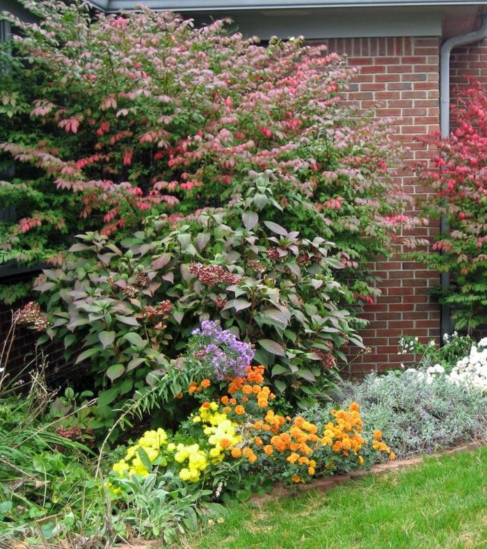 Gartengestaltung tipps wie sie licht und schatten im - Gartenpflanzen bestimmen ...