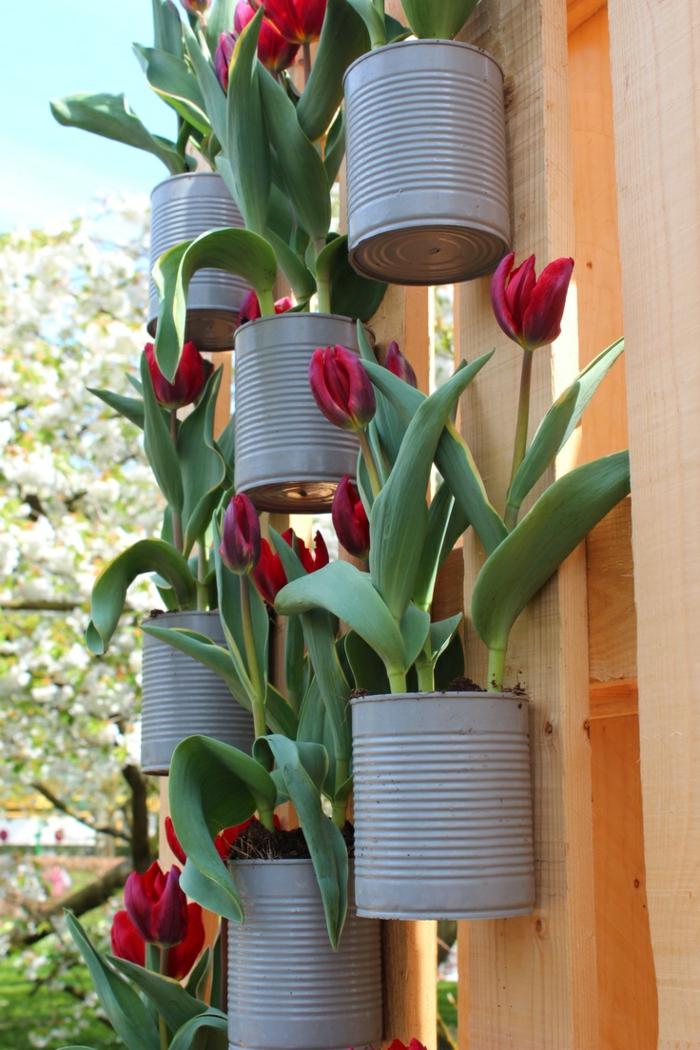 gartenideen alte dosen tulpen dekoideen garten