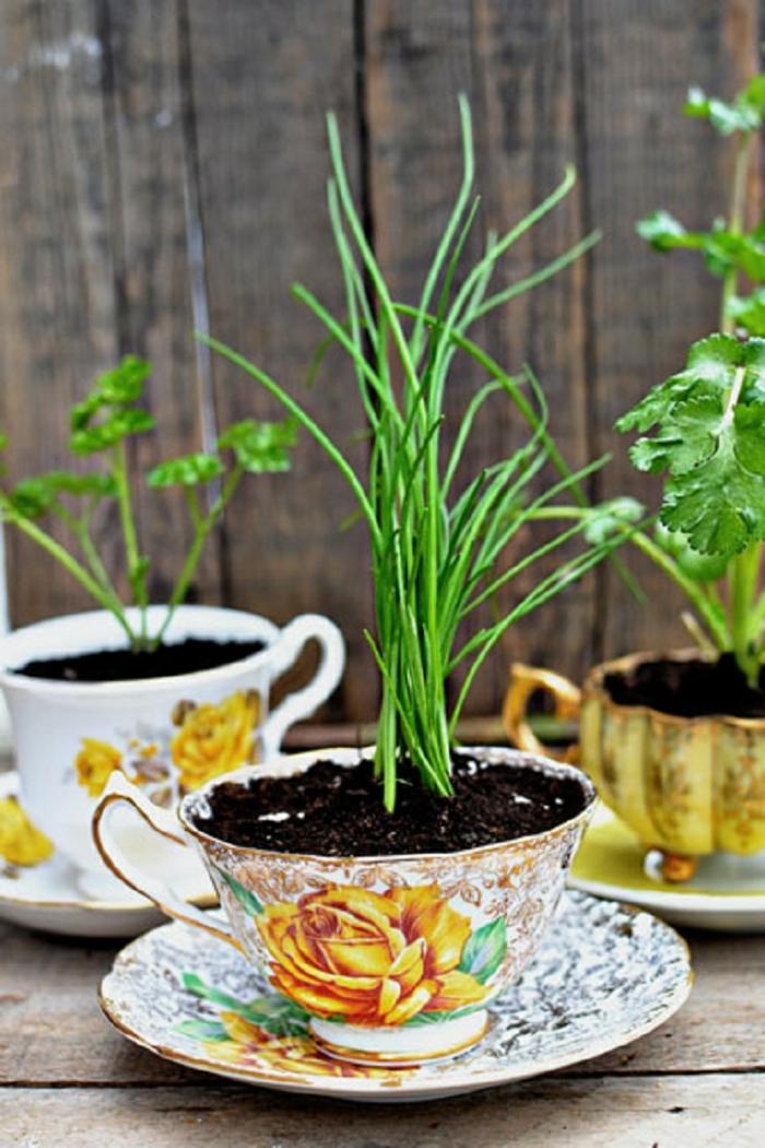 gartenideen blumentöpfe teetassen garten pflanzen