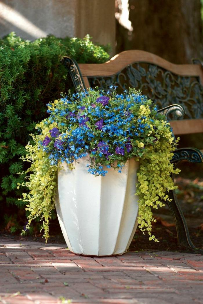 Gartengestaltung tipps wie sie licht und schatten im - Gartenideen pflanzen ...