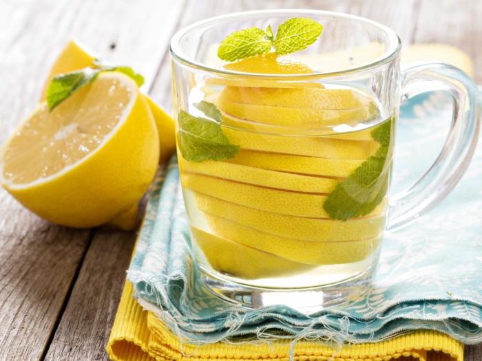 gesund leben dehydrierung wasser trinken fruchtwasser zitrone minze