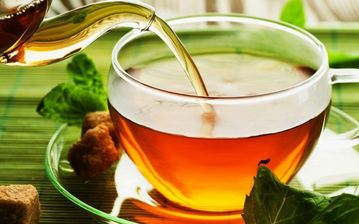gesund leben tee trinken kräuter