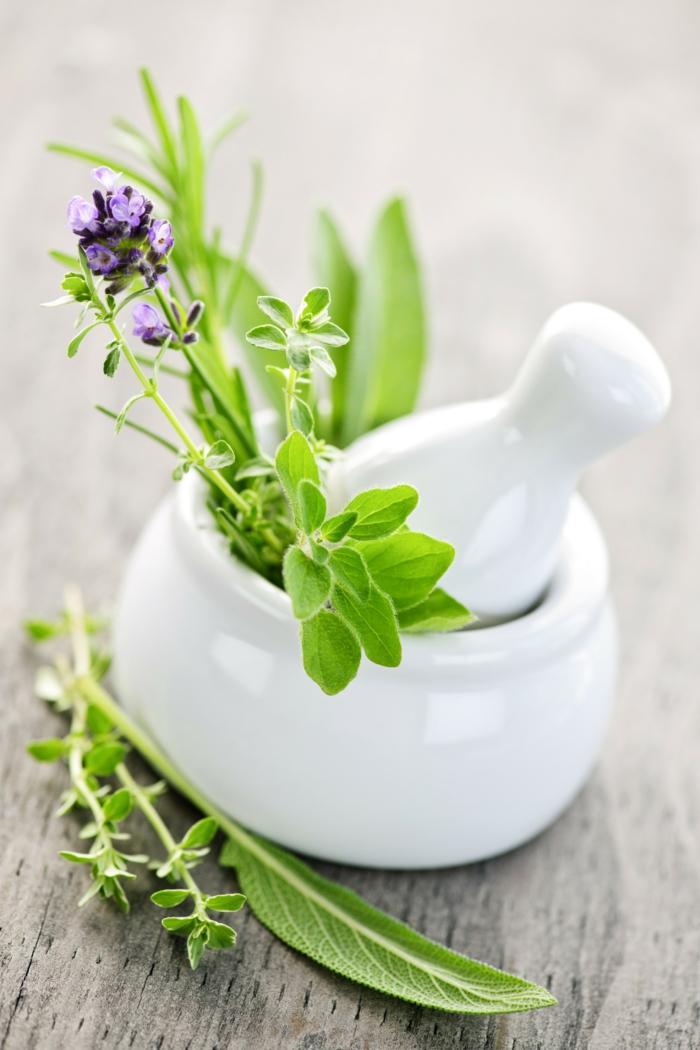 gesundes leben natur kosmetik lifestyle