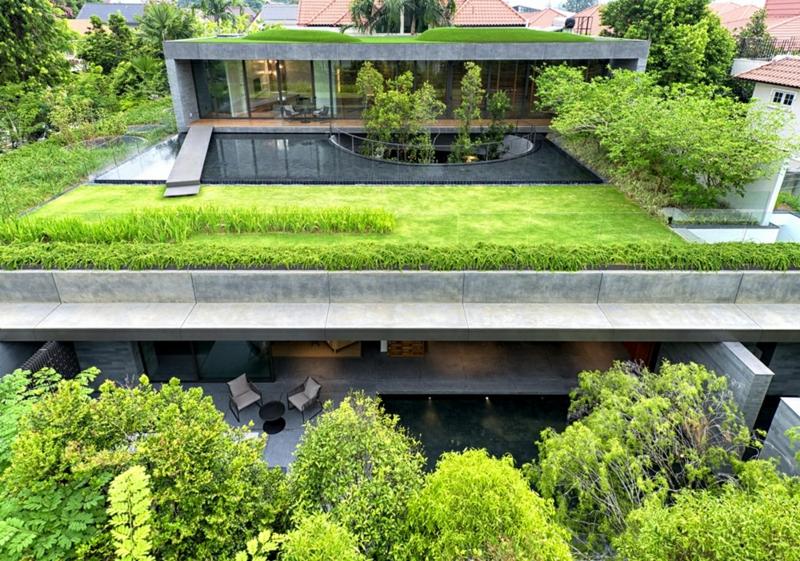 grüne Architektur Häuser bauen Architektenhaus Hausfassade Begrünung