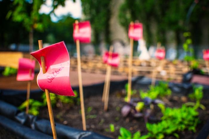 hochbeet bauen beflanzen gartenideen diy ideen holz vorgarten himmelbeet berlin3