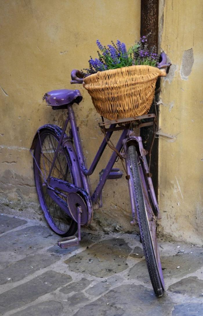kreative garten ideen fahrrad lavendel