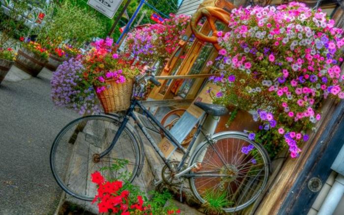 kreative gartenideen für kleine gärten fahrrad bunt