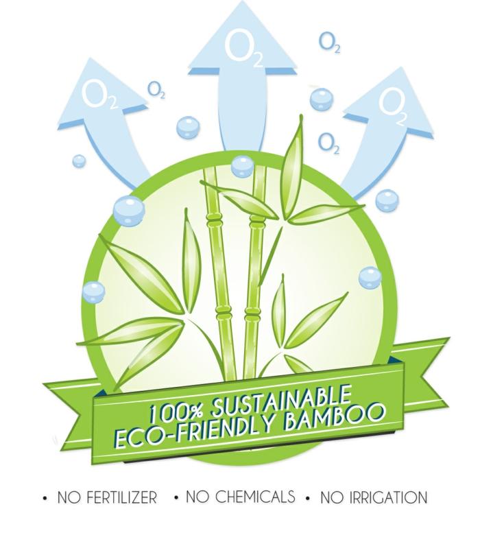 nachhaltige mode ökologische kleidung bio kleidung bambus organisch